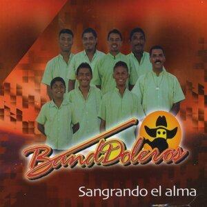 Grupo BandDoleros 歌手頭像