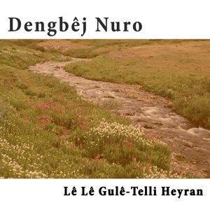 Dengbej Nûro 歌手頭像