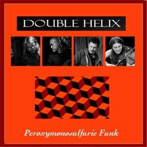 Double Helix 歌手頭像