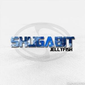 Shugabit 歌手頭像