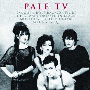 Pale TV 歌手頭像