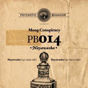 Moog Conspiracy