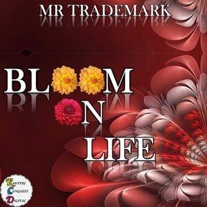 Mr Trademark