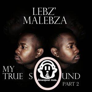 Lebz'Malebza 歌手頭像