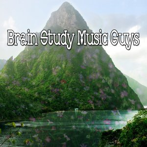 Brain Study Music Guys 歌手頭像