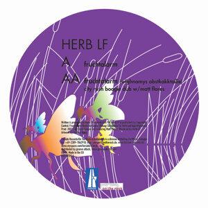 Herb LF 歌手頭像