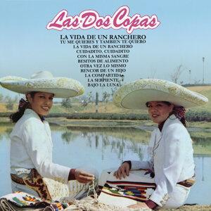 Las Dos Copas 歌手頭像