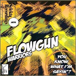Flowgun Warriors 歌手頭像
