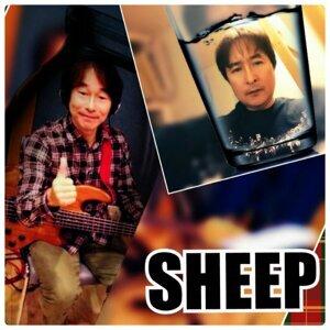 SHEEP 歌手頭像