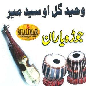 Wahid Gul, Syed Meer 歌手頭像