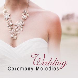 Instrumental Wedding Music Zone 歌手頭像