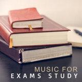 Konzentration Musikexperten