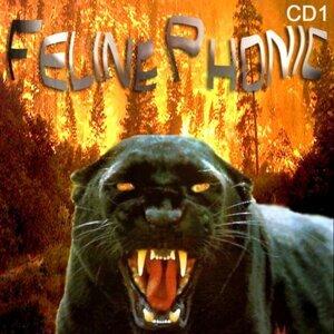 Feline Phonic 歌手頭像