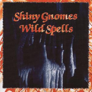 The Shiny Gnomes 歌手頭像