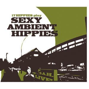17 Hippies 歌手頭像