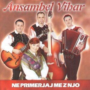 Ansambel Vibar 歌手頭像