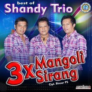 Shandy Troi 歌手頭像