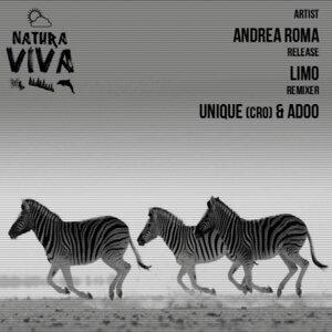 Andrea Roma