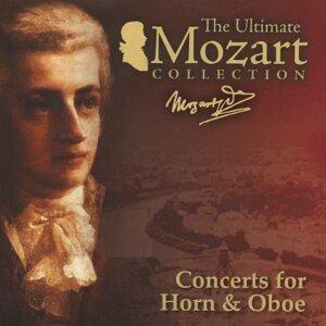 Alberto Lizzio, Camerata Labazensis, Mozart Festival Orchestra 歌手頭像