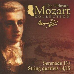 Francesco Macci, Camerata Academica, Mozarteum Quartet Salzburg 歌手頭像