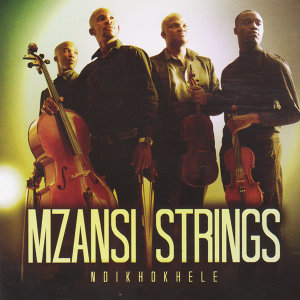 Mzansi Strings 歌手頭像