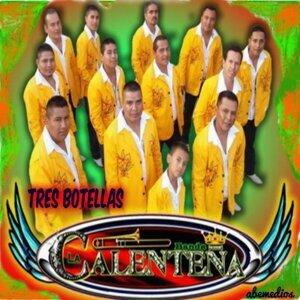 Banda La Calentena 歌手頭像