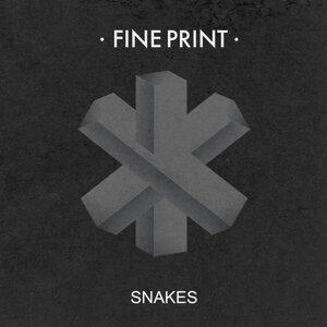 Fine Print