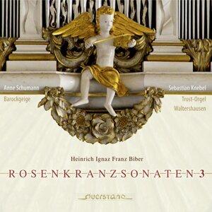 Anne Schumann, Sebastian Knebel 歌手頭像