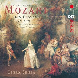 Opera Senza 歌手頭像