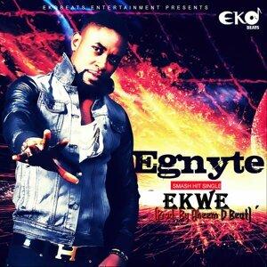 Egnyte 歌手頭像
