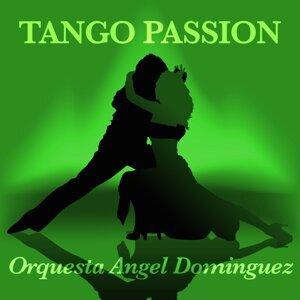 Orquesta Angel Dominguez 歌手頭像