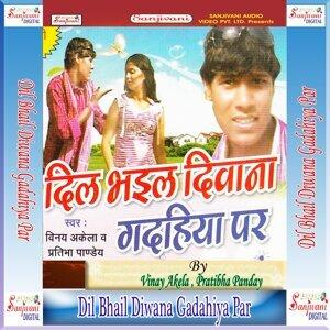 Vinay Akela, Pratibha Panday 歌手頭像