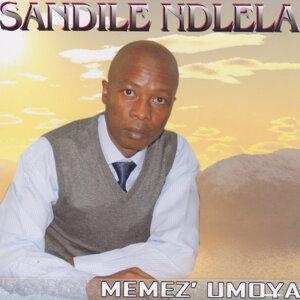 Sandile Ndlela 歌手頭像