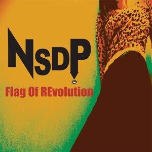 NSDP 歌手頭像