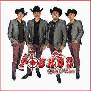 Los Pochos Del Norte 歌手頭像