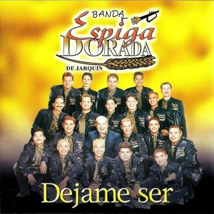 Banda Espiga Dorada De Jarquin 歌手頭像