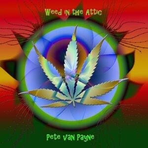 Pete Van Payne 歌手頭像