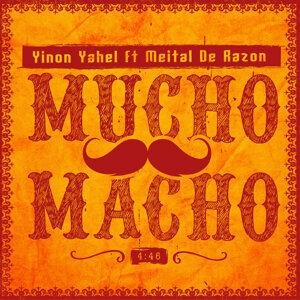 Yinon Yahel feat. Meital De Razon 歌手頭像