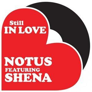 Notus, Shena 歌手頭像