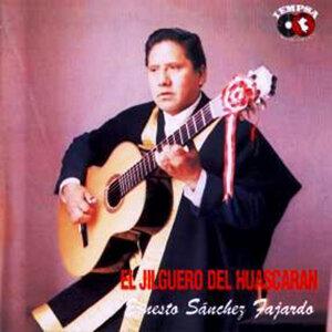 Ernesto Sanchez Fajardo 歌手頭像