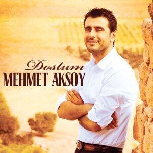 Mehmet Aksoy 歌手頭像