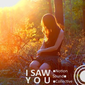 Notion Sound Collective