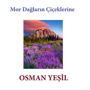 Osman Yeşil 歌手頭像