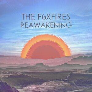 The Foxfires 歌手頭像