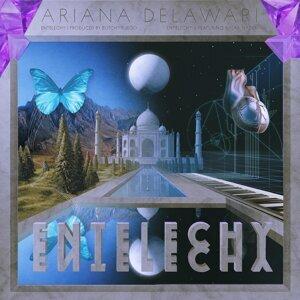 Ariana Delawari 歌手頭像