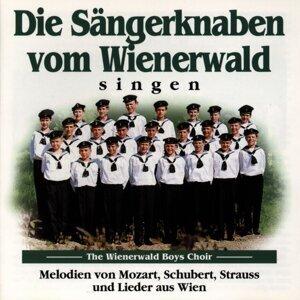 Die Sangerknaben vom Wienerwald アーティスト写真