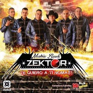 Norteño Banda Zektor 歌手頭像