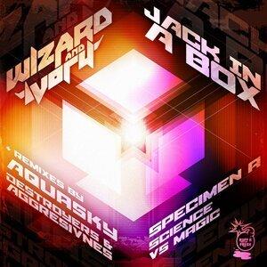 Wizard & Ivory 歌手頭像