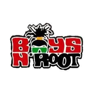 Boys n Root 歌手頭像