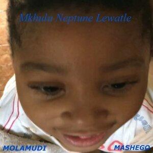Molamudi Mashego 歌手頭像